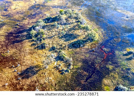 Okavango Delta (or Okavango Grassland), which is one of the Seven Natural Wonders of Africa (view from the airplane) - Botswana, South-Western  - stock photo