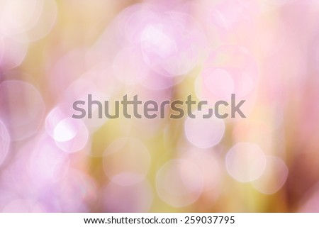 okeh blurry natural abstract violate background - stock photo