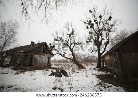 old abandoned wooden houses in winter countryside