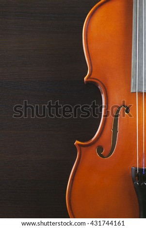 Old and dusty violin