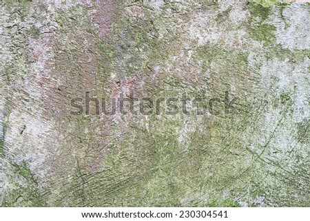 Old and weathered wall texture - stock photo