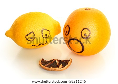 old and young citrus on white - stock photo