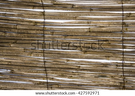 Old bamboo wall. The texture of the dry reeds.  Cane. - stock photo