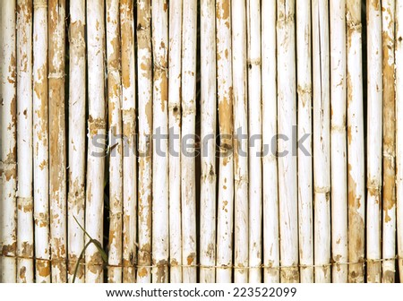 Old Bamboo Wall With Weathered White Paint Background Texture - stock photo