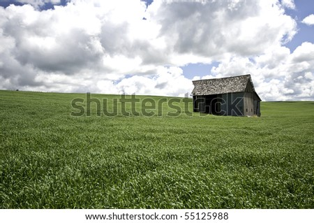 Old barn in  field of green grass and dark clouds above. - stock photo