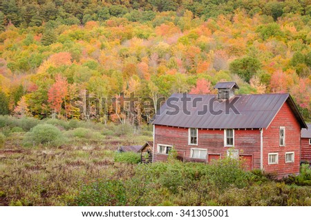 Old barn sits beneath the foliage in Brant Lake, Adirondack Mountains, NY