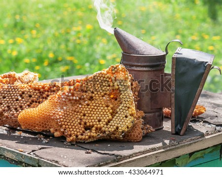 old bee smoker and honeycomb - stock photo