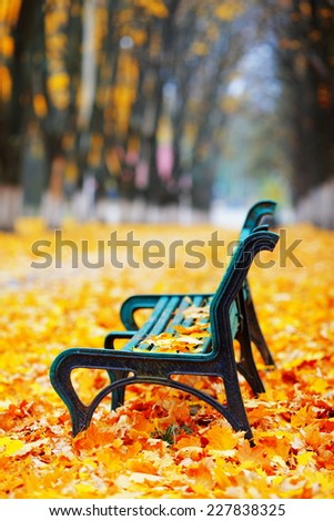 old bench in the autumn park with yellow leaves - stock photo