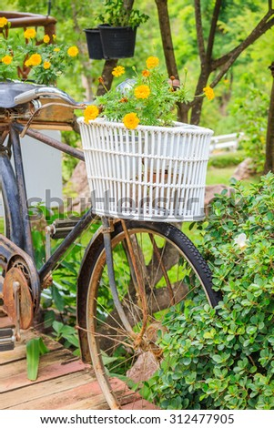 Old bicycle in garden - stock photo