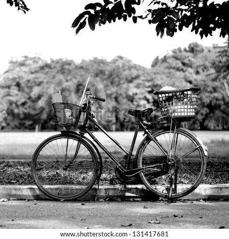 Old bicycle in park, Black and white photography - stock photo