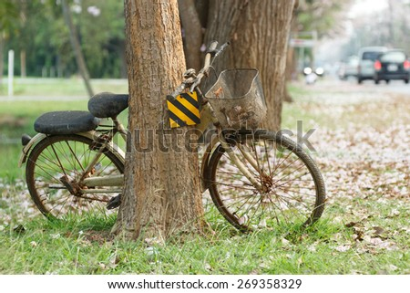 Old bicycle in the garden. - stock photo