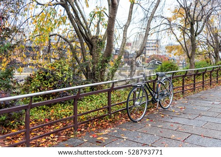 Old bicycles on walkway in autumn public park.