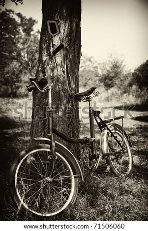 Old bike near tree. Photo in old black style.