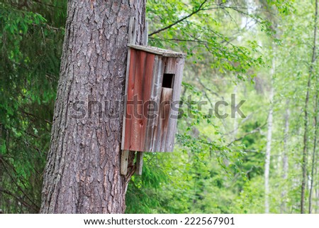 Old birdhouse on a Scots pine, painted red - stock photo