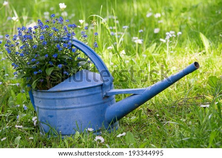 Old blue watering can