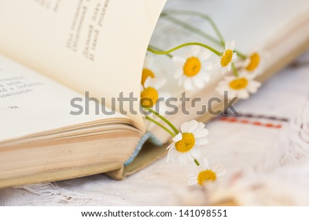 Old book and daises - stock photo