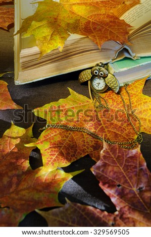 Old books with bronze clock in form of owl among yellow maple leaves and natural sunlight -autumn still life. Selective focus at the clock and book - shallow depth of field - vintage filter processing - stock photo