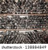 Old bottles in a private wine collection. - stock photo