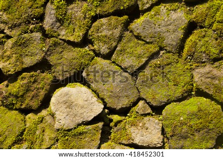Old boulder Moss wall background  - stock photo