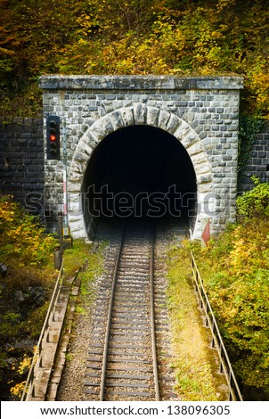 Old brick tunnel in the mountains in autumn/Train tunnel - stock photo