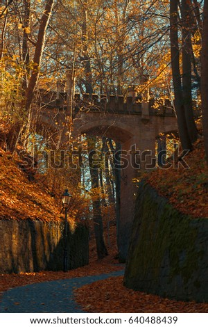 old bridge in a autmn forest in Gera