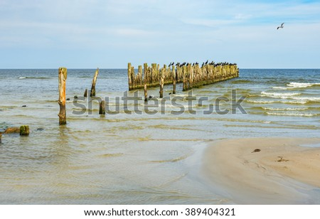 Old broken berth at a sandy beach of the Baltic Sea - stock photo