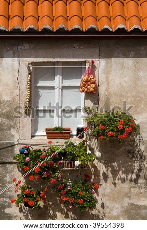 Old broken window with onions and flowers - stock photo