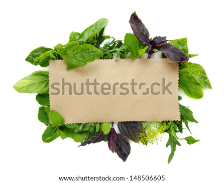 Old brown paper with fresh herbs, isolated on white - stock photo