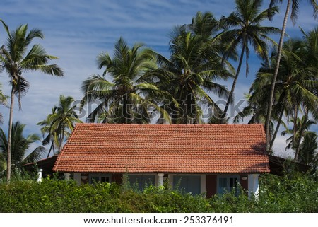 Old building in tropical forest - stock photo