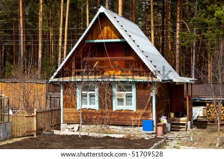 Old cabin in the pine forest - stock photo