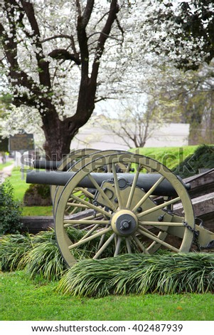 Old Cannons in Natchez Mississippi under spring bloom - stock photo