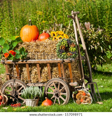 Old carriage cart decorated with autumn fruits and flowers