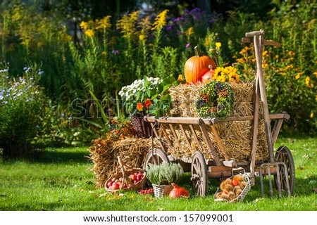 Old carriage cart decorated with autumn fruits and flowers - stock photo