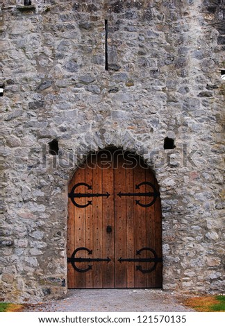 Old castle door - stock photo