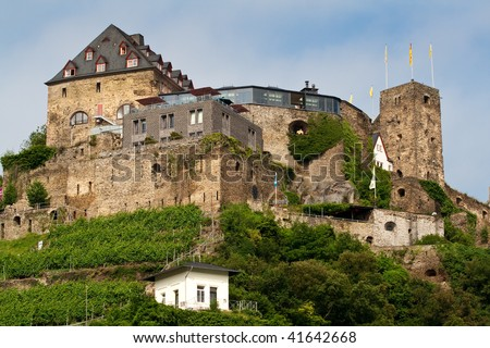 Old castle on hill. From the series Castles on the Rhine river