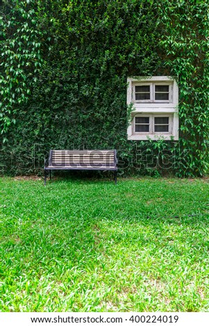 Old Chair at front wall with Green Plants Covered and A Window Frame - stock photo