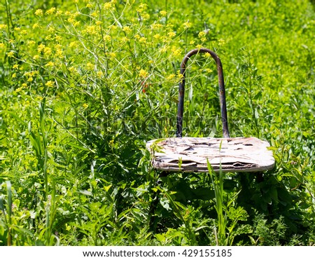 old chair in nature