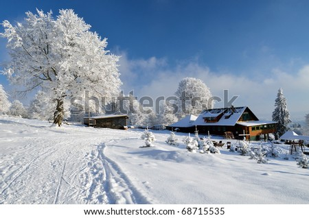 Old chalet under snow tree and blue sky in Alps - stock photo