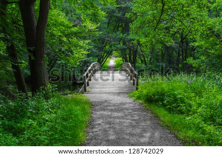 Old charming wooden bridge over a creek in the middle of the forest. - stock photo
