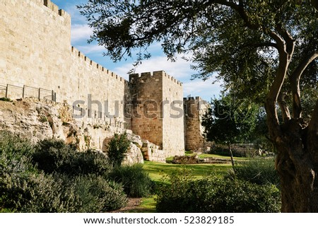 Old City Wall of Jerusalem with Olive Trees