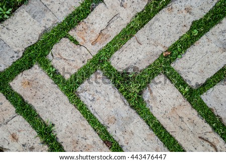 Captivating Old Cobblestone Background With Grass / Brick With Grass / Tiles With Grass  / Stone Way