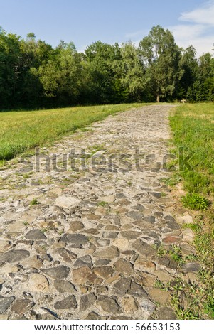 Old cobblestone road through the meadow