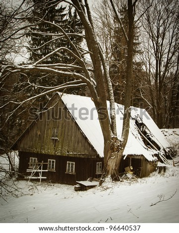 Old cottage in Orlicke hory - stock photo
