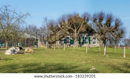 Old cottage with cattle - stock photo