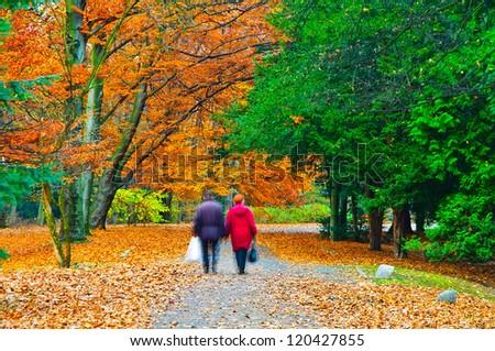 Old couple walking in autumn park - stock photo
