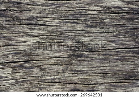 old cracked wood close-up texture ideal for background.  - stock photo