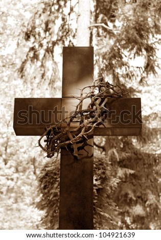 old cross and thorns  at cemetery - stock photo
