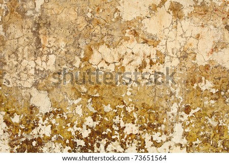 Old dirty nasty plaster on the wall surface - stock photo
