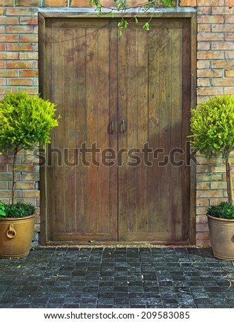Old door and wall Potted tree left and right side. - stock photo