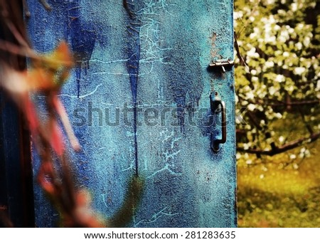 old door with cracked blue paint on the blossoming apple garden background - stock photo